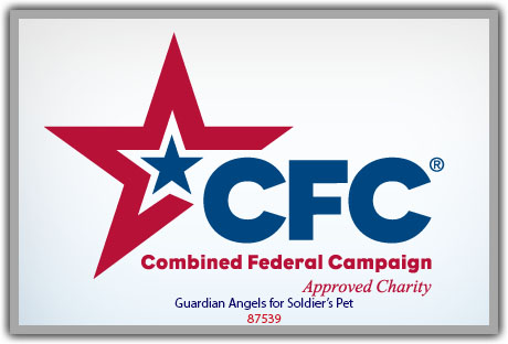 Combined Federal Campaign #87539